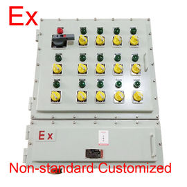 Explosion Proof Panel